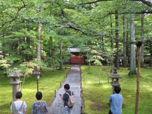 京都大原三千院庭園赤門