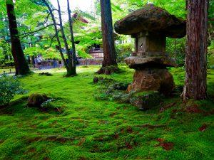 京都大原三千院石灯篭