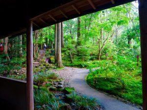 京都大原三千院庭園茶屋