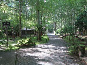 京都大原三千院庭園山道
