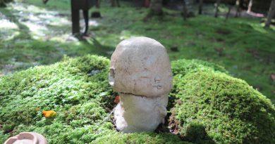 京都大原三千院庭園白地蔵