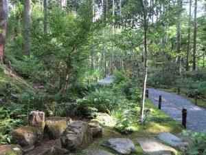 京都大原三千院庭園山道3