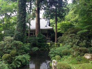 京都大原三千院庭園2
