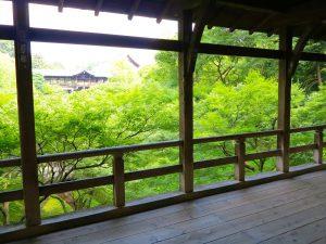 東福寺臥雲橋見どころ