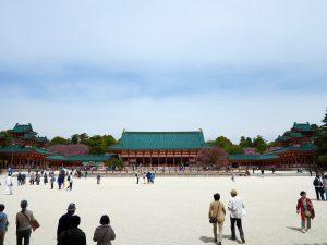 平安神宮桜お花見3