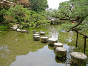 平安神宮桜お花見10