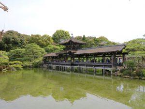 平安神宮桜お花見16