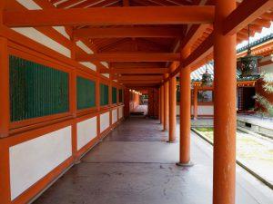 平安神宮桜お花見19