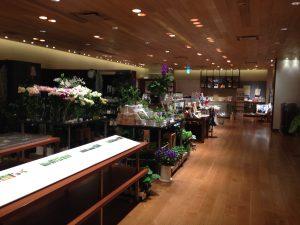 京都八百一本館1
