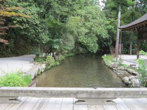 上賀茂神社11