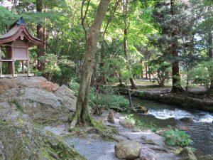 3456上賀茂神社