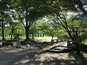 上賀茂神社678