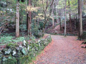 高山寺1211