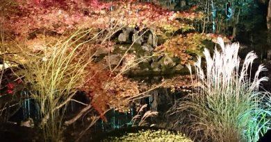 南禅寺10