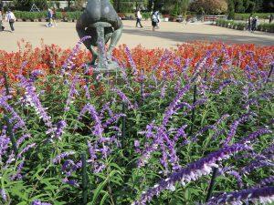 京都府立植物園24