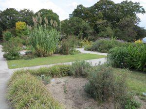 京都府立植物園23