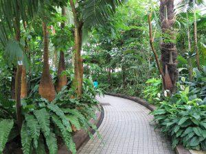京都府立植物園20