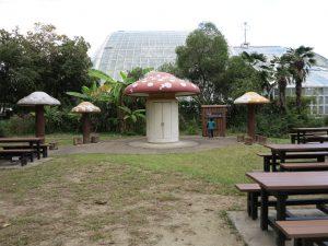 京都府立植物園10