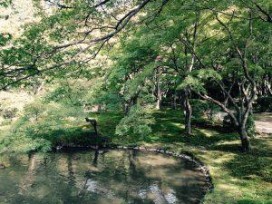 z京都府立植物園2