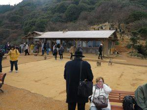嵐山モンキーパークいわたやま11