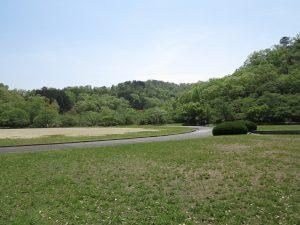 京都岩倉新緑5