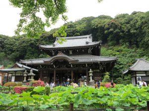 三室戸寺32