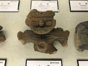 京都大学博物館14