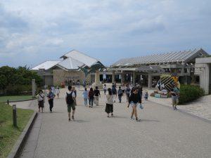 美ら海水族館15
